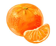 Immagine del mandarino illustrazione vettoriale