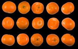 Immagine del mandarino e del primo piano arancio Fotografia Stock