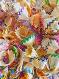 Immagine del nido asciutto e vuoto dell'ape su Libro Bianco Fotografie Stock Libere da Diritti