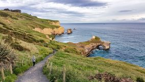 Immagine del paesaggio della spiaggia costiera in Nuova Zelanda fotografia stock