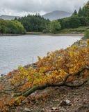 Immagine del paesaggio della vista dalla passeggiata del precipizio in overloo di Snowdonia immagini stock libere da diritti