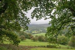 Immagine del paesaggio della vista dalla passeggiata del precipizio in overloo di Snowdonia immagine stock libera da diritti