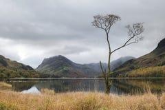 Immagine del paesaggio di Stuning Autumn Fall del lago Buttermere in lago D Immagine Stock
