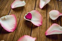 Immagine del primo piano dei petali di rosa rossa su un fondo di legno Immagine Stock