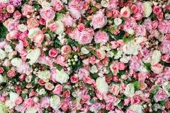 Immagine del primo piano di bello fondo dei fiori con i fiori rosa e bianchi, vista superiore Fotografia Stock