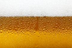 Immagine del primo piano di una birra con schiuma e le bolle, fondo Immagini Stock