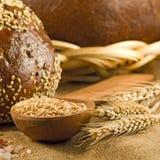 immagine del primo piano del pane fresco immagini stock libere da diritti