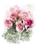 Immagine dell'acquerello delle rose Immagini Stock Libere da Diritti