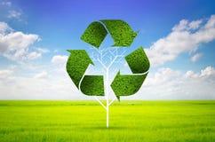 Albero come simbolo di riciclaggio Fotografie Stock