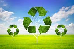 Albero come simbolo di riciclaggio Immagine Stock