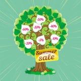 Immagine dell'albero di vendite di estate Fotografia Stock