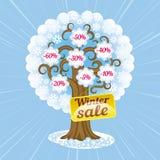 Immagine dell'albero di vendite di inverno Fotografia Stock Libera da Diritti