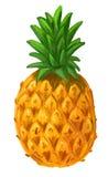 Immagine dell'ananas Fotografia Stock Libera da Diritti