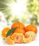 Immagine dell'arancia sul primo piano del fondo di luce solare Immagini Stock