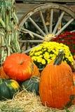 Immagine dell'autunno Fotografia Stock Libera da Diritti
