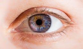 Immagine dell'occhio umano Immagini Stock Libere da Diritti