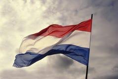 Bandiera olandese Immagini Stock
