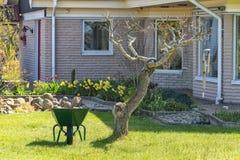 Immagine della carriola nel cortile con erba verde Immagini Stock