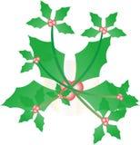 Immagine della cartolina di Natale dell'edera dell'agrifoglio Fotografia Stock