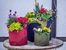Immagine della decorazione creativa dei fiori nel giardino fotografie stock libere da diritti
