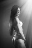 Immagine della femmina sexy splendida con castana Fotografie Stock
