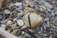 Immagine della roccia rotta del mare sui precedenti della spiaggia di sabbia Struttura del ciottolo immagine stock