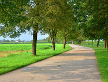 Immagine della via del parco Fotografia Stock