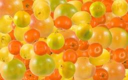 Immagine delle arance, dei mandarini e del primo piano dei pompelmi fotografie stock libere da diritti