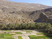 Immagine delle rovine su Jebel Akhdar Fotografia Stock Libera da Diritti