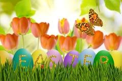 Immagine delle uova di Pasqua e dei fiori su un fondo verde, Fotografia Stock