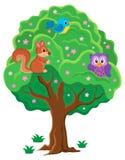 Immagine 1 di argomento dell'albero di primavera Immagine Stock