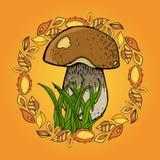 Immagine di autunno con il fungo, l'erba e le foglie Immagine Stock Libera da Diritti