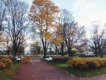 Immagine di autunno di St Petersburg fotografia stock
