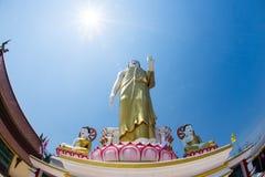Immagine di Buddha nella posizione diritta Fotografie Stock Libere da Diritti