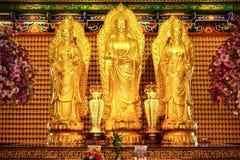 Immagine di Buddha in tempio cinese Immagini Stock Libere da Diritti
