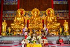 Immagine di Buddha in tempio cinese Fotografie Stock