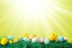 Immagine di festa di Pasqua con le uova e l'erba dei pulcini Fotografie Stock Libere da Diritti