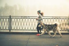 Immagine di funzionamento con il suo cane, malamute d'Alasca della ragazza Immagine Stock Libera da Diritti