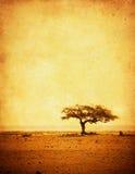 Immagine di Grunge di un albero su un documento dell'annata Immagini Stock Libere da Diritti