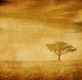 Immagine di Grunge di un albero su un documento dell'annata Immagine Stock Libera da Diritti