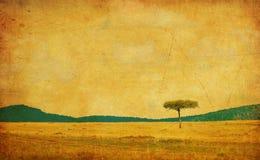 Immagine di Grunge di un albero su un documento dell'annata Fotografia Stock Libera da Diritti