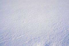 immagine di neve Immagine Stock