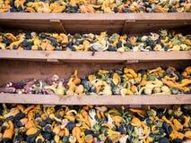 Immagine di piccoli pumkins e cereale in uno scaffale immagine stock