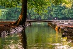 Immagine di piccolo ponte sopra il lago durante il tramonto immagine stock libera da diritti