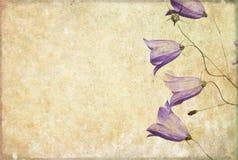 Immagine di priorità bassa con gli elementi floreali Immagini Stock