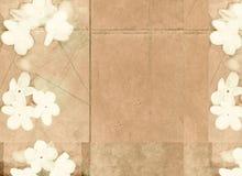 Immagine di priorità bassa strutturata con la flora fotografia stock