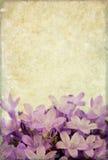 Immagine di priorità bassa con gli elementi floreali Fotografia Stock Libera da Diritti