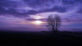 Immagine di rilassamento di un paesaggio nebbioso Fotografia Stock