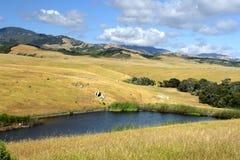 Immagine di riserva del Big Sur alla costa centrale della California, U.S.A. Fotografie Stock
