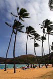 Immagine di riserva della baia di Hanauma, Oahu, Hawai Fotografie Stock Libere da Diritti
